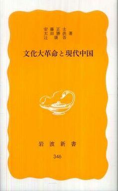 文化大革命と現代中国
