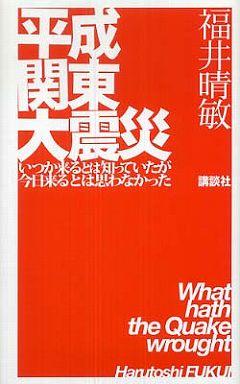 平成関東大震災―いつか来るとは知っていたが今日来るとは思わなかった