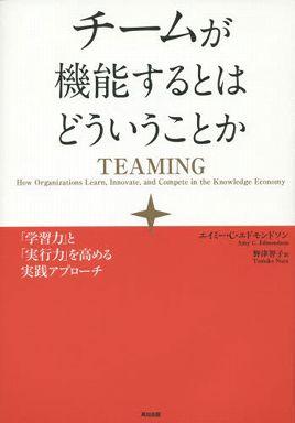 チームが機能するとはどういうことか―「学習力」と「実行力」を高める実践アプローチ